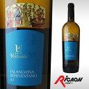 【ワイン お酒 白ワイン ギフト ワイン お酒 白ワイン ギフト ワイン お酒 白ワイン ギフト ワイン お酒 白ワイン ギフト】