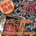Uva_new