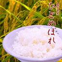 お米 送料無料 ひとめぼれ 白米 10kg 岩手県産 あす楽 安い 美味しい