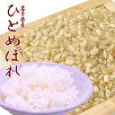 お米 送料無料 ひとめぼれ 玄米 10kg 岩手県産 あす楽 安い 美味しい