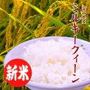 【新米】お米 送料無料 ミルキークイーン 白米 10kg 富山県産 あす楽 安い 美味しい