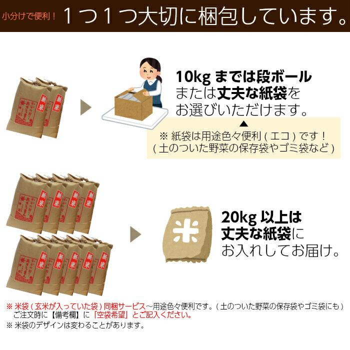 【新米】30年 米 25kg 送料無料 白米 ...の紹介画像2