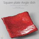 和食器 簡単かぶのたらこサラダ 紅黒炭甲羅 正角皿 スクエア...