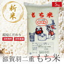平成28年度新米 特別栽培米 羽二重もち米 5kg