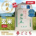 平成28年度新米 環境こだわり特別栽培米 夢ごこち 玄米 30kg