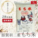平成28年度産 特別栽培米 羽二重もち米 5kg