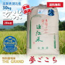 平成28年度産 環境こだわり特別栽培米 夢ごこち 玄米 30kg