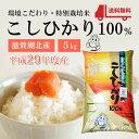 平成29年度産【新米】 特別栽培米 こしひかり100% 5Kg