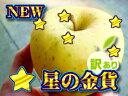 期待の青森りんご再販決定!訳あり[星の金貨]5kg詰(約14〜23玉入)