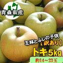 【予約商品】訳あり「トキ」5kg詰(約14〜23玉入)※出荷...