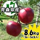 【予約商品】【業務用】訳あり『紅玉』8.6kgダンボール・モールドパック詰(36〜56玉
