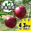 【予約商品】訳あり『紅玉』4.3kgダンボール・モールドパック詰(約18〜28玉入)※10/6頃より順次出荷予定