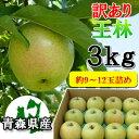 【訳あり】甘い青りんごの代表格!甘さと香りの『王林』3kgダンボール・モールドパック詰(約9〜12玉入)