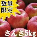 【予約商品】【数量限定100箱】青森県産「訳あり」さんさ5kg(20〜25玉入)