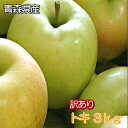 【早期割引予約商品】訳あり「トキ」3kg詰(約8〜13玉