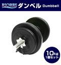 【送料無料】RIORESセメントダンベル10kg 1個 /エクサ