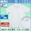 【送料無料】スクール 白 ポロシャツ 半袖 鹿の子ポロシャツ 制服 通園 通学 白 小学