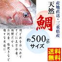 【送料無料】【あす楽対応/即納】冷凍 天然鯛 三重県産【 約500gサイズ(約30cm) 】下処理済