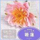 睡蓮 スイレン 造花 仏壇 お供え 【5,000円以上送料無料】水連