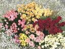 50本以上お好きな本数で追加購入OK還暦60本の薔薇の花束・100本バラも・・・ご卒業・ご入学・歓送迎会・門出に贈る花束バラ50本の花束 送料無料4980円!【k4u5643】100本の薔薇の花束にも調整OK