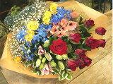 季節の花 50本 期間限定2500お祝・お見舞い・誕生日に贈る花束ギフトにも・指定日配達対応】
