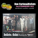 CD+DVD◆Don Carlos&His Cats◆◆マダムキラー◆◆Fetish DollプロモーションDVD feat.STRAWBERRY DICE◆