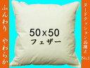 【数量限定】【セール品】フェザーヌードクッション(羽根クッション中材)50×50cm(約51×51cm)