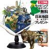 地球儀のイメージ