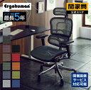 送料無料Ergohuman エルゴヒューマン プロ ヘッドレスト付 EHP-HAM オフィスチェア チェア 椅子 イス いす ゲーミングチェア リクライニング ■RWS