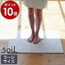 soil バスマット 珪藻土 ソイル Lサイズ 【ポイント1...