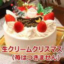 クリスマスケーキ 生クリーム 6号サイズ 6〜8名様 デコレ...