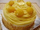 このモンブランが食べたかった!黄金色に輝く昔懐かしの黄色いモンブラン5号サイズ