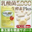 【乳酸菌5,000 生酵素Plus(30カプセル入)】あなたの善玉菌を育てて増やす、乳酸菌&生酵素サプリ。1袋に15兆個の乳酸菌(FK-23)/生きてる酵素/腸...