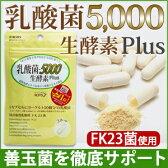 【乳酸菌5,000 生酵素Plus(30カプセル入)】あなたの善玉菌を育てて増やす、乳酸菌&生酵素サプリ。1袋に15兆個の乳酸菌(FK-23)/生きてる酵素/腸内フローラケア/菌活/送料無料/メール便発送/ROTTS ロッツ【02P28Sep16】