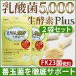 【2個セット/乳酸菌5,000 生酵素Plus(30カプセル入)】あなたの善玉菌を育てて増やす、乳酸菌&生酵素サプリ。1袋に15兆個の乳酸菌(FK-23)/生きてる酵素/腸内フローラケア/【送料無料/クロネコDM便(ポスト投函)】【05P09Jul16】