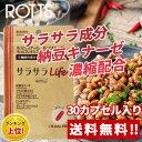 サラサラLife (30カプセル入)納豆キナーゼ&イチョウ葉エキス&タマネギ皮エキス配合サプリ。毎日のサラサラをサポートします!ナットウ..