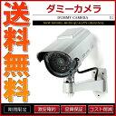 ダミーカメラ 防犯カメラ 監視カメラ 太陽光 ソーラーパネル 単4電池【あす楽】【配送種別:B】