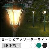 ������̵���ۡ������Բġۡڥ����ǥ��顼 ��ñ���� ���� �緿LED LED19�� ���������סۡإ����顼�饤�� ���� ���� ���� ���۸� �衼��ԥ����顼������������� �����ǥ� �� �����ǥ�饤�� �����ǥ��顼�饤�� ���� ���� �����ǥ˥�JT-018��