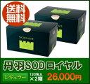 丹羽SODロイヤルレギュラー120包入2箱セット【送料無料】ポイント進呈 ♪