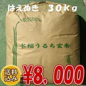 はえぬき玄米30kg
