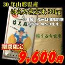 30年山形県産はえぬき玄米30kg...