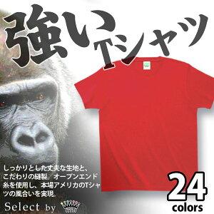 グレード Tシャツ こだわり