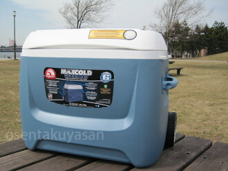IGLOO 62qt MAX COLD 58L (62 QT) cooler box with casters ■ igloo