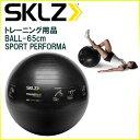 スキルズ トレーニング用品 バランスボール 65cm BALL-65CM SPORT PERFORMANCE 耐荷重:約226kg エクササイズボール SKLZ 005098