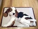 Point2倍・玄関マット 室内 です。水洗い可能 です。約 55X85cm 可愛いい ダックスフンド 犬 アクリル素材 玄関マット を格安卸し価格で販売。 玄関マット(送料無料)