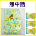 2017年製 井関食品 熱中飴1kg レモン味