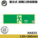 蓄光式 避難口誘導標識 非常口 人物左向き 矢印なし 緑地 120x360xD1.2