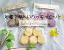 送料無料!卵・乳・小麦不使用のサクサククッキー【かぼちゃ】【紅芋】【チョコ】各種2個入り