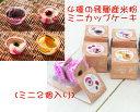 4種の飛騨高山産米粉のミニカップケーキ【アレルギー対応ケーキ】【卵・乳・小麦・アーモンド不使用】【冷凍便】
