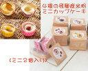4種の飛騨高山産米粉のミニカップケーキ(B)【アレルギー対応ケーキ】【卵・乳・小麦・アーモンド不使用】【冷凍便】